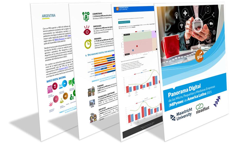 estudio panorama digital mipymes